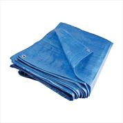Dust Sheets And Tarpaulins